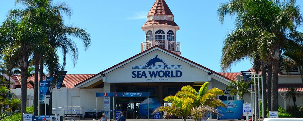 Seaworld-Resort-Main-Beach